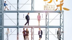 Stray Birds อลวนคนไอที ซับไทย EP.1