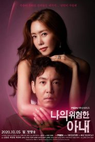 ซีรี่ย์เกาหลี My Dangerous Wife ปริศนารักซ้อนเร้น ตอนที่ 1-16 จบ