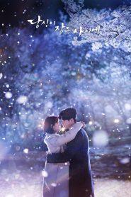 ซีรี่ย์เกาหลี While You Were Sleeping ลิขิตฝันฉันและเธอ ตอนที่ 1-16 จบ